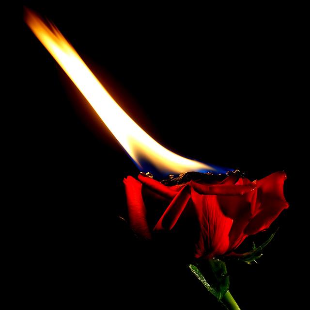 Amor ardente!