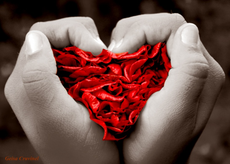 O Coração nas Mãos