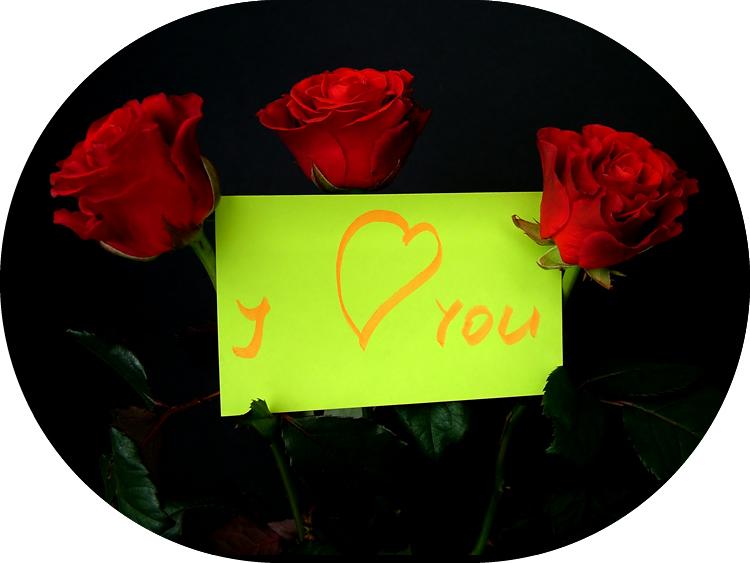 3 Rosas vermelhas