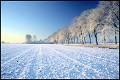 Campo de Neve - Postal de Paisagens