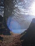 Caminho p/ o lago - Postal de Paisagens