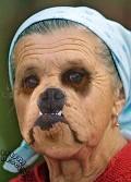 Dogy - Postal de Animais