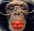 Beijinhos para ti - Postal de Divertimento
