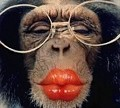 Beijinhos para ti