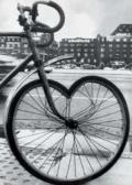 Ciclista Apaixonado