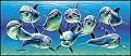 Delfins - Postal de Agradecimento