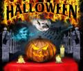 Festa do Halloween - Postal de Datas Festivas