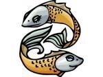 Peixes - Horóscopo - Postal de Zodíaco