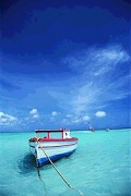 Paraíso Azul - Postal de Paisagens