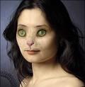 Catwoman - Postal de Animais