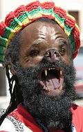 JamaicaDog - Postal de Animais